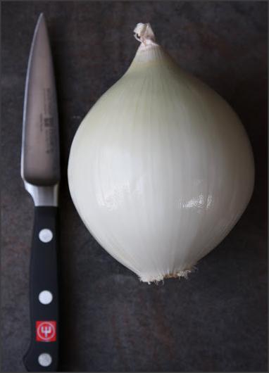 Onion Lotus